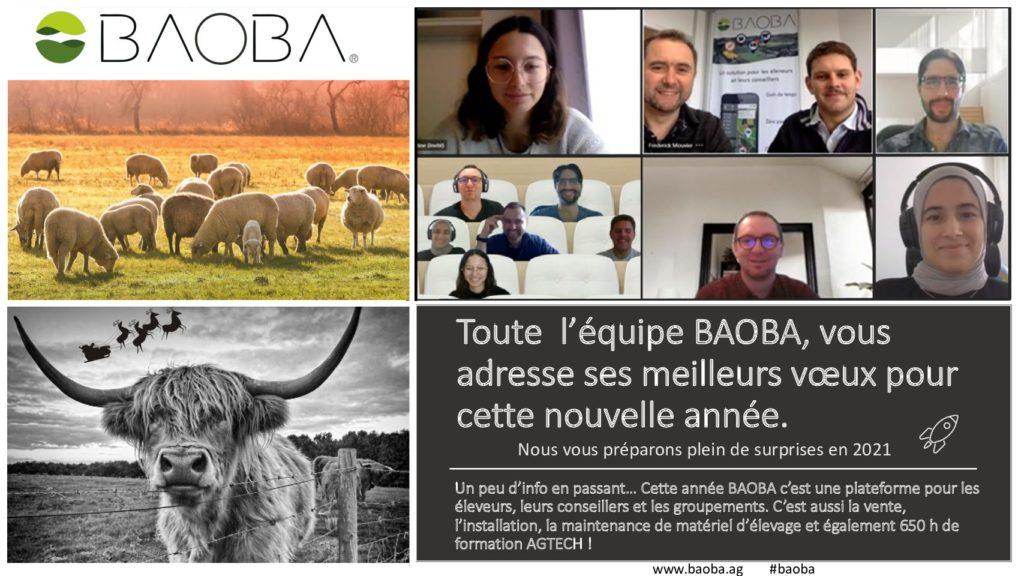 Carte-de-voeux-2020 baoba