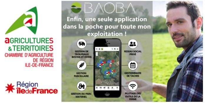 chb-IDF-region baoba