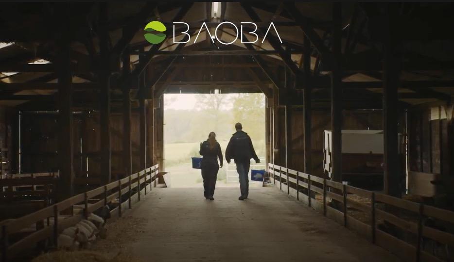 Video-teaser-1 baoba