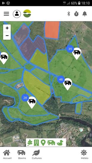 Ecran_cartographie_bovin_baoba_
